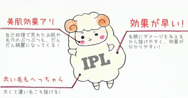 IPL脱毛 脱毛機 効果 剛毛 VIO 脇 キレイモ ブログ